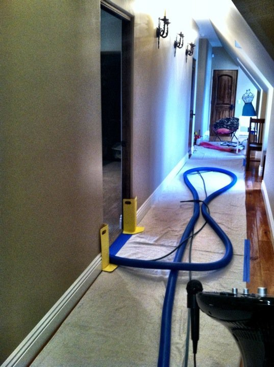 Condo Carpet Cleaning Service Menifee Rug Cleaning Compnay Near Me