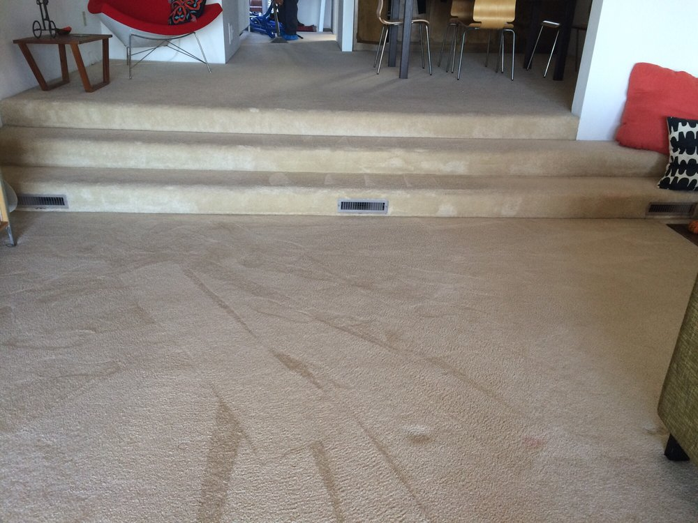 Getting Rid of Reappearing Carpet Spots Menifee Carpet Cleaners