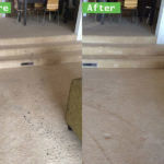 Best Tips on Cleaning Up After Pets in Menifee Ca Carpet Cleaners